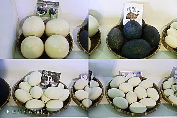 淡水蛋蛋節,蛋蛋節-67.jpg