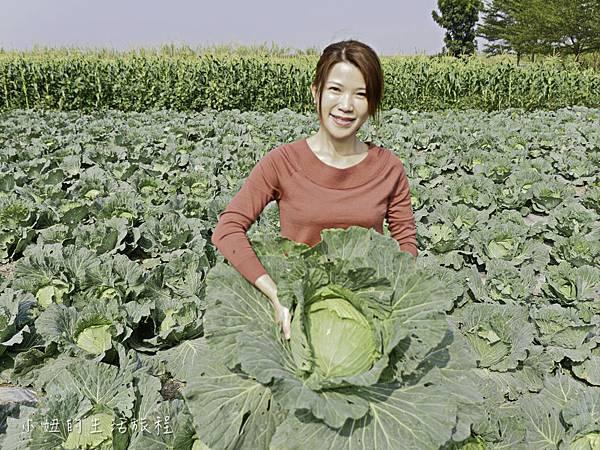 台糖有機蔬果,台糖有機米-14.jpg