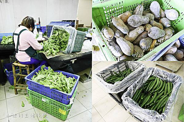 台糖有機蔬果,台糖有機米-28.jpg