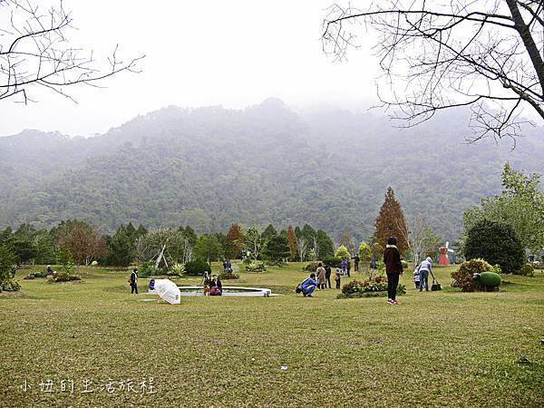 南庄雲水度假森林,落羽松,新竹-1.jpg