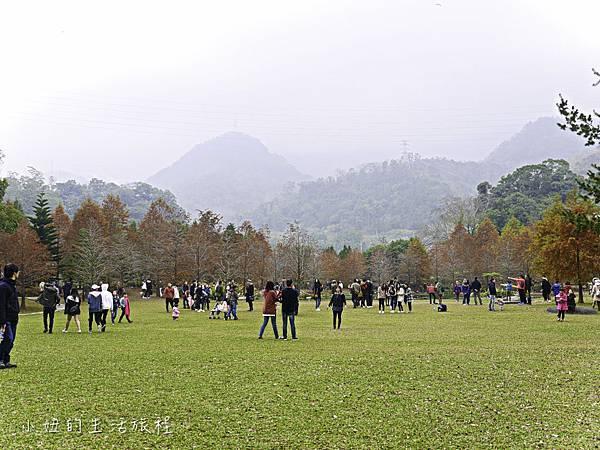 南庄雲水度假森林,落羽松,新竹-22.jpg