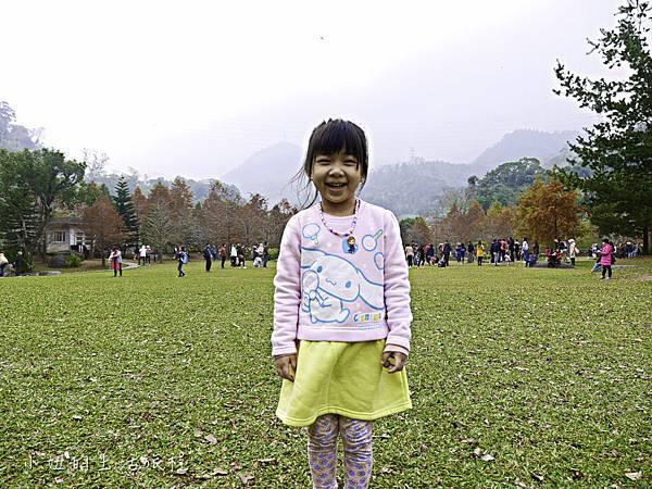 南庄雲水度假森林,落羽松,新竹-23.jpg