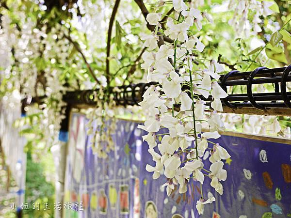 九州,中山大藤,紫藤花.交通-6.jpg