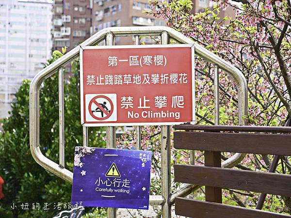 樂活公園,內湖特色公園,內溝溪,賞櫻,內湖,櫻花-12.jpg