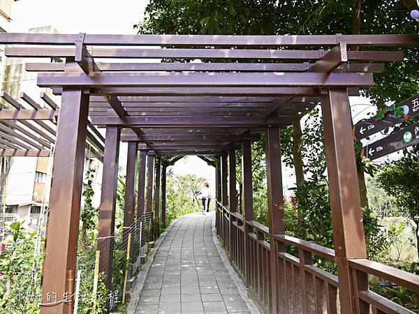 樂活公園,內湖特色公園,內溝溪,賞櫻,內湖,櫻花-24