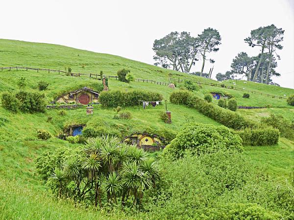 霍比特人村,紐西蘭,哈比村,哈比人,KLOOK -17.jpg