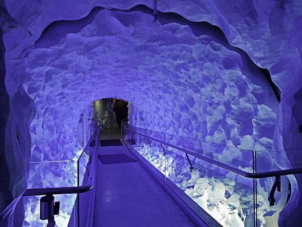 紐西蘭,凱利塔頓海洋生物水族館,Kelly Tarltons SEA -7.jpg