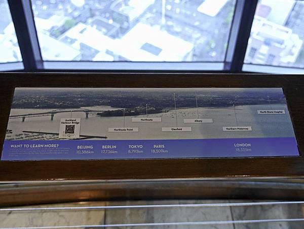 Sky Tower天空塔,奧克蘭,紐西蘭-7.jpg