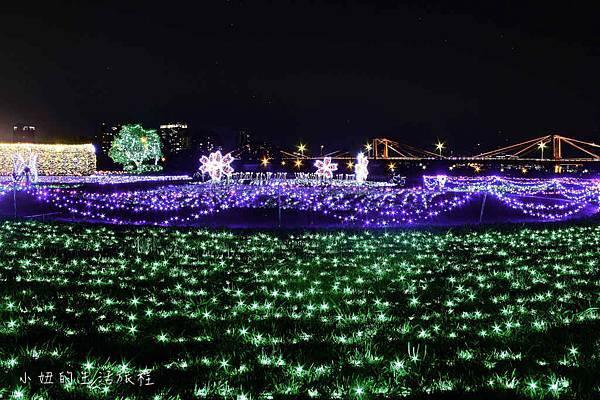 板橋江翠礫間蝴蝶公園,風車-11.jpg