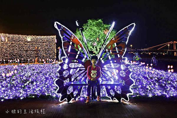 板橋江翠礫間蝴蝶公園,風車-14.jpg