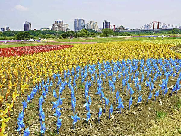 板橋江翠礫間,蝴蝶公園,風車-52.jpg