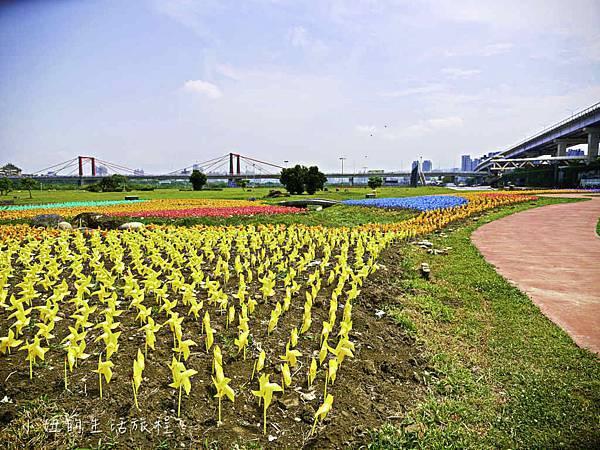 板橋江翠礫間,蝴蝶公園,風車-56.jpg