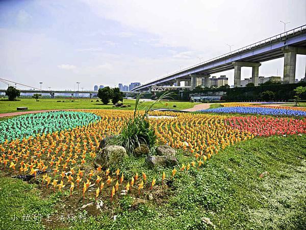 板橋江翠礫間,蝴蝶公園,風車-59.jpg
