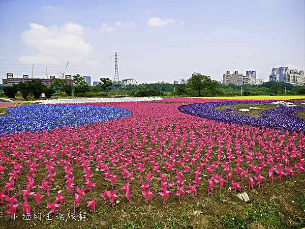 板橋江翠礫間,蝴蝶公園,風車-61.jpg