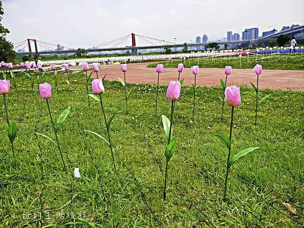 板橋江翠礫間,蝴蝶公園,風車-67.jpg