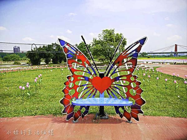 板橋江翠礫間,蝴蝶公園,風車-68.jpg