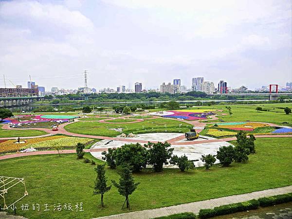 板橋江翠礫間,蝴蝶公園,風車-76.jpg