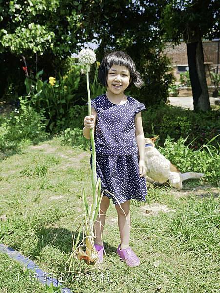 溝貝親子休閒農莊,新竹親子景點-17.jpg