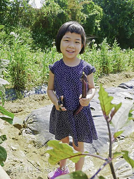溝貝親子休閒農莊,新竹親子景點-16.jpg