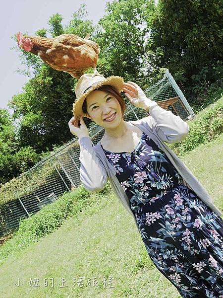 溝貝親子休閒農莊,新竹親子景點-24.jpg