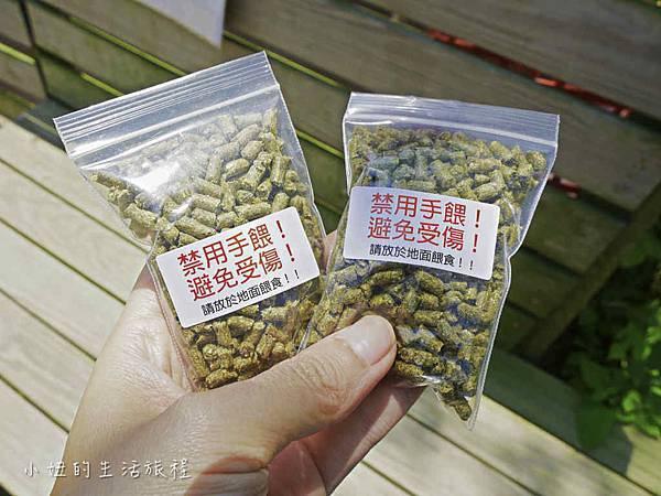 溝貝親子休閒農莊,新竹親子景點-31.jpg