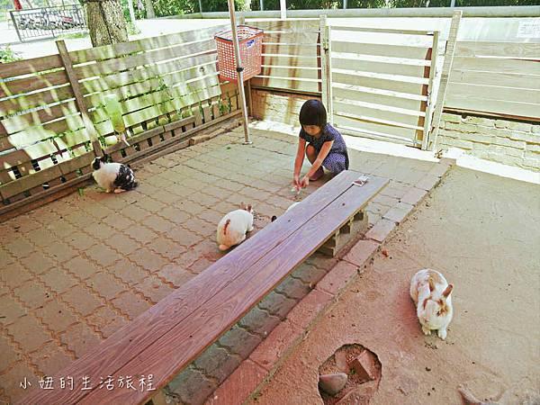 溝貝親子休閒農莊,新竹親子景點-32.jpg