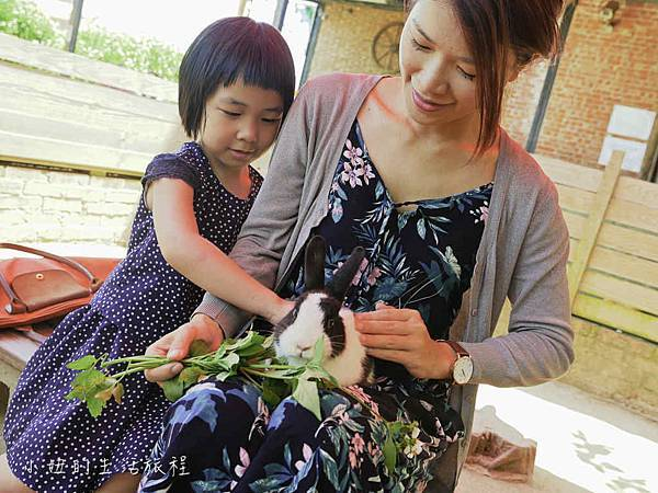 溝貝親子休閒農莊,新竹親子景點-35.jpg