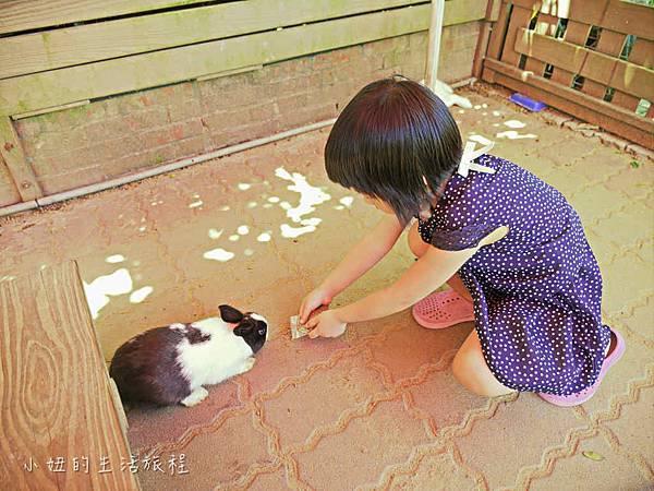 溝貝親子休閒農莊,新竹親子景點-34.jpg