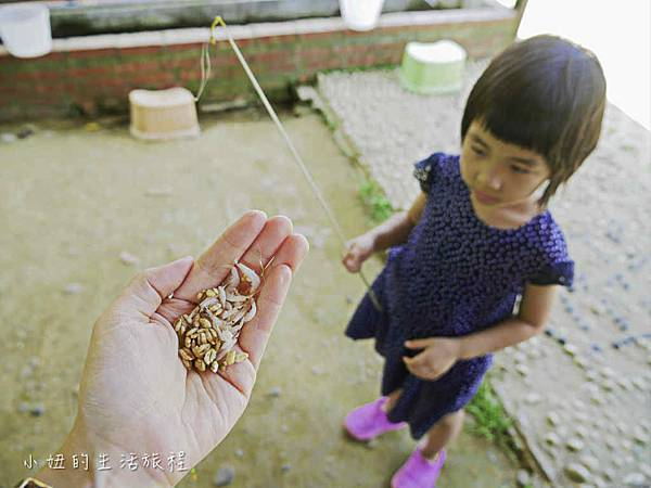 溝貝親子休閒農莊,新竹親子景點-38.jpg