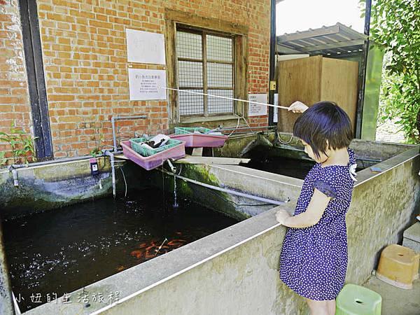 溝貝親子休閒農莊,新竹親子景點-39.jpg