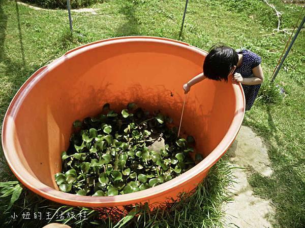 溝貝親子休閒農莊,新竹親子景點-61.jpg