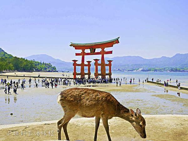 宮島神社-1