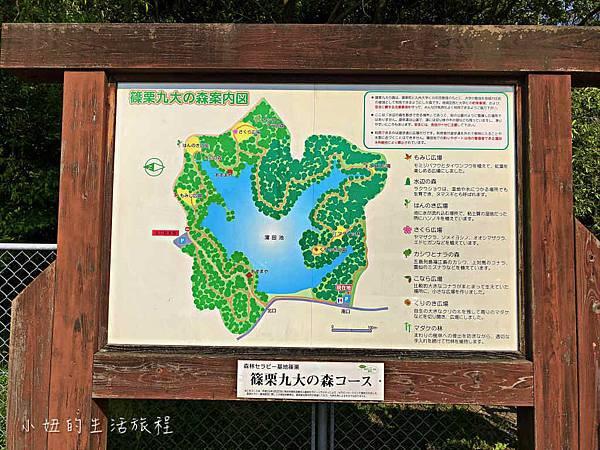 篠栗九大の森,福岡-9.jpg