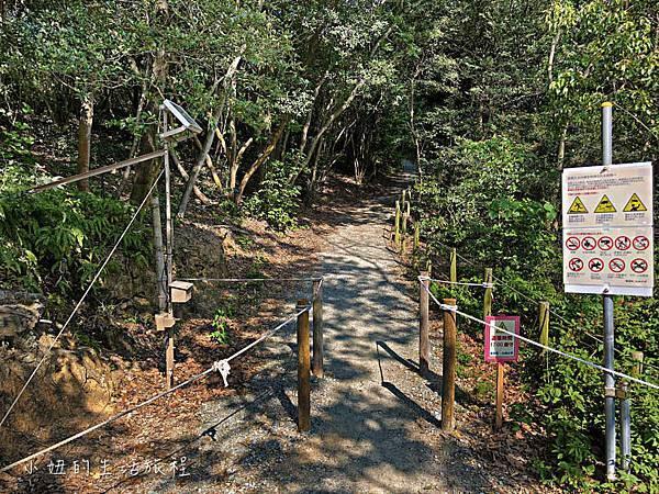 篠栗九大の森,福岡-12.jpg