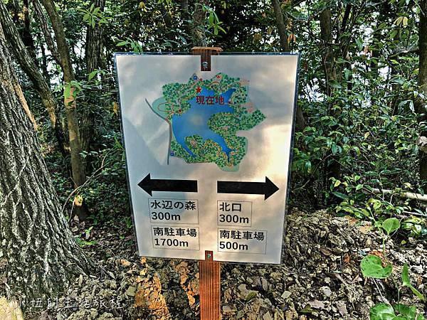 篠栗九大の森,福岡-15.jpg