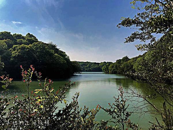 篠栗九大の森,福岡-13.jpg