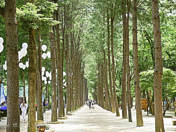 韓國首爾自由行行程-32.jpg