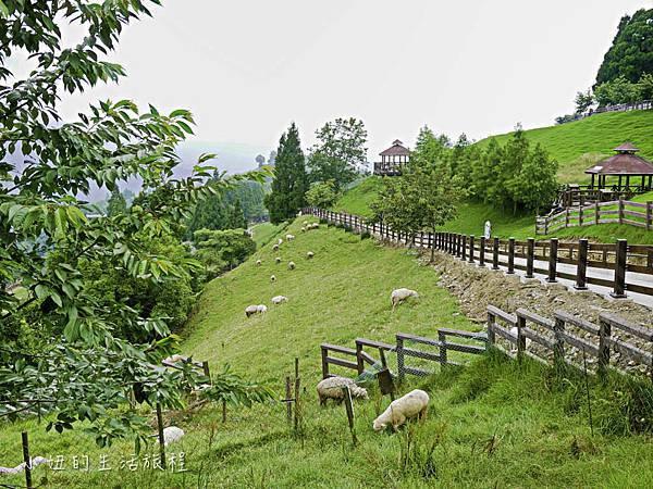 南投假期,清境農場,武陵,合歡山-13.jpg