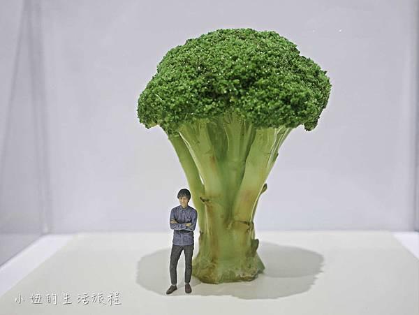 微型展-田中達也的奇想世界-4.jpg