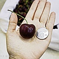 農林水果,水果禮盒,麝香葡萄,日本水果禮盒,北海道哈密瓜-22.jpg