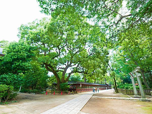 千本鳥居 (根津神社)-4.jpg