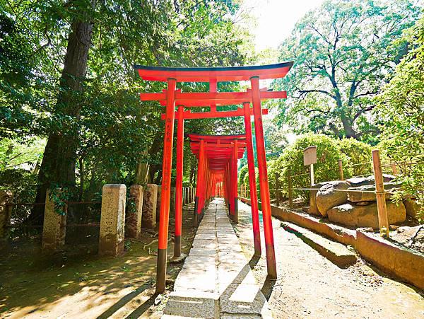 千本鳥居 (根津神社)-8.jpg