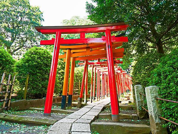 千本鳥居 (根津神社)-11.jpg