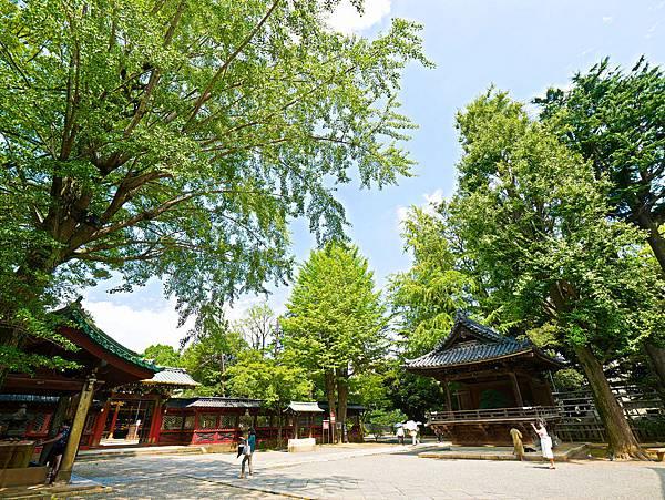 千本鳥居 (根津神社)-12.jpg