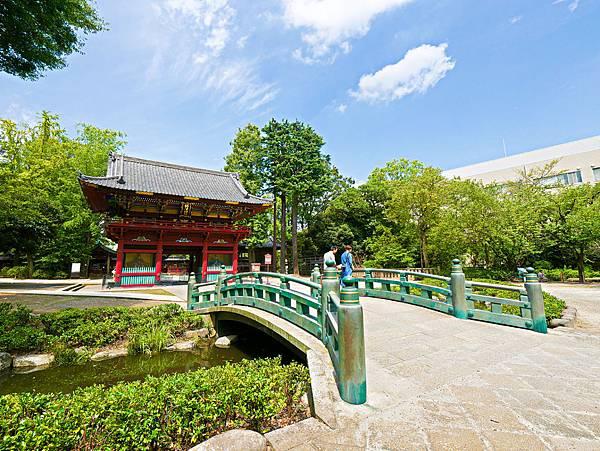 千本鳥居 (根津神社)-21.jpg