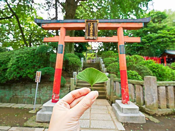 千本鳥居 (根津神社)-22.jpg