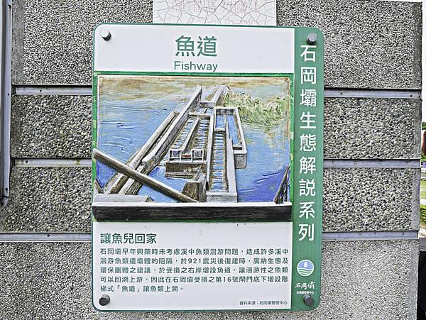 湖山水庫,石岡壩-32.jpg