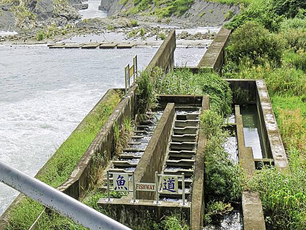 湖山水庫,石岡壩-34.jpg