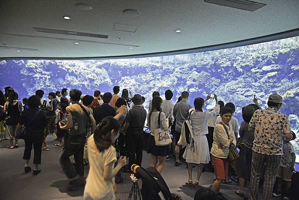 沖繩美麗海水族館-3.jpg