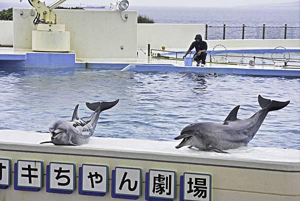 沖繩美麗海水族館-14.jpg